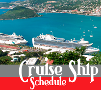 Cruise ship schedule